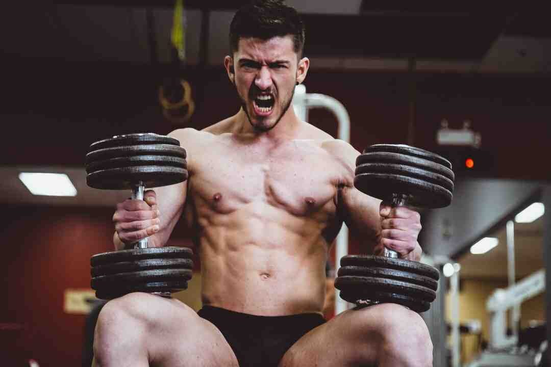 Comment muscler son dos avec un banc de musculation ?
